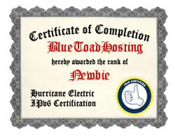 IPv6 Certification Badge for BlueToadHosting