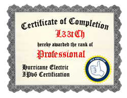 IPv6 Certification Badge for L33tCh