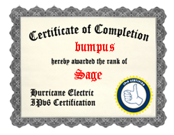 IPv6 Certification Badge for bumpus