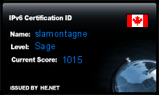 IPv6 Certification Badge for slamontagne