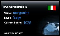 IPv6 Certification Badge for morganino